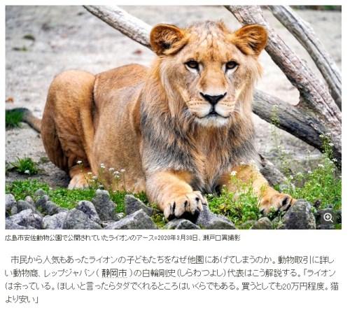 動物園の余剰動物