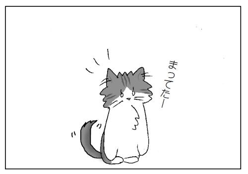 ストーカー(=^・^=)
