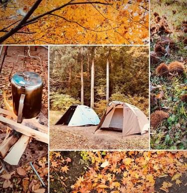 丹波篠山渓谷の森公園はどんな場所?設備や施設をブログで紹介!周辺の温泉情報も!