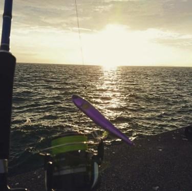 大阪で太刀魚が釣れない!釣れる時期とタイミングはいつなのか?