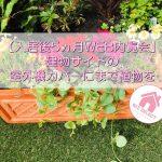 【入居後5ヵ月WEB内覧会】建物サイドの室外機カバーにまで植物を