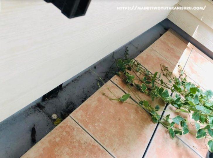 【注文住宅日記2020/8/25】バルコニーをゴシゴシブラシ掃除できるのは快感ね