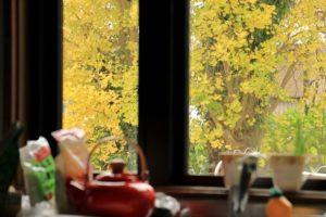 【質問回答】南側キッチンを使って感じるメリット・デメリットは?