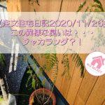 【注文住宅日記2020/11/26】この異様な臭いは・・・ジャカランダ?!