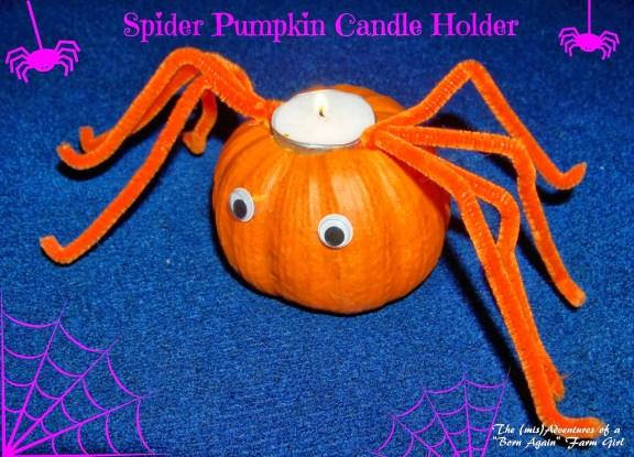 Halloween Crafts - Spider Pumpkin