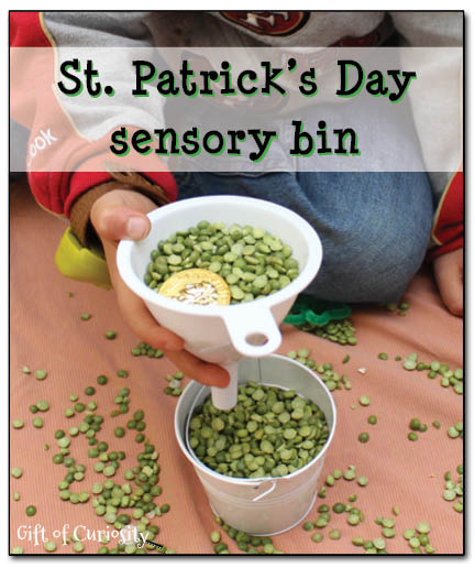St. Patrick's Day sensory bin (and some spontaneous science learning!) #StPatricksDay #sensorybins || Gift of Curiosity