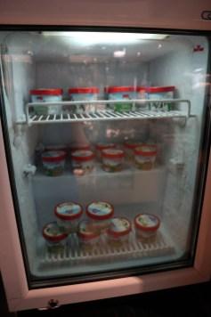 Haagen-Dazs ice cream (Photo: MainlyMiles)