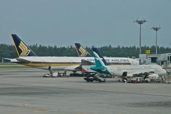 SilkAir & SIA (Aero Icarus)