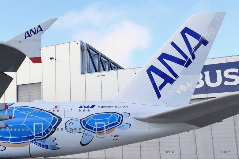 NH A380 Turtle Tail (Airbus).jpg