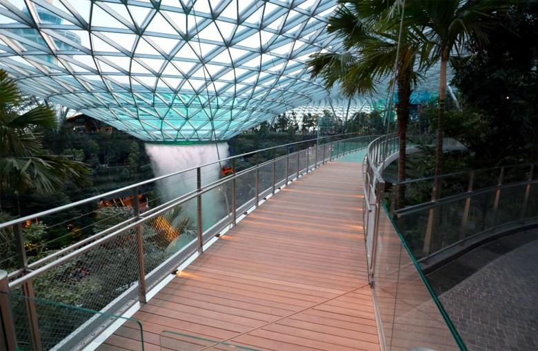 Canopy Bridge.jpg