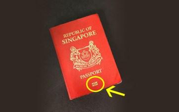 SG Passport Symbol.jpg