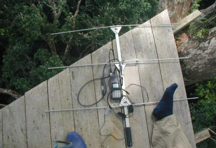 A VHF receiver and Yagi directional antenna take a break on a tree platform.