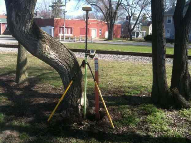 BM Tree 001