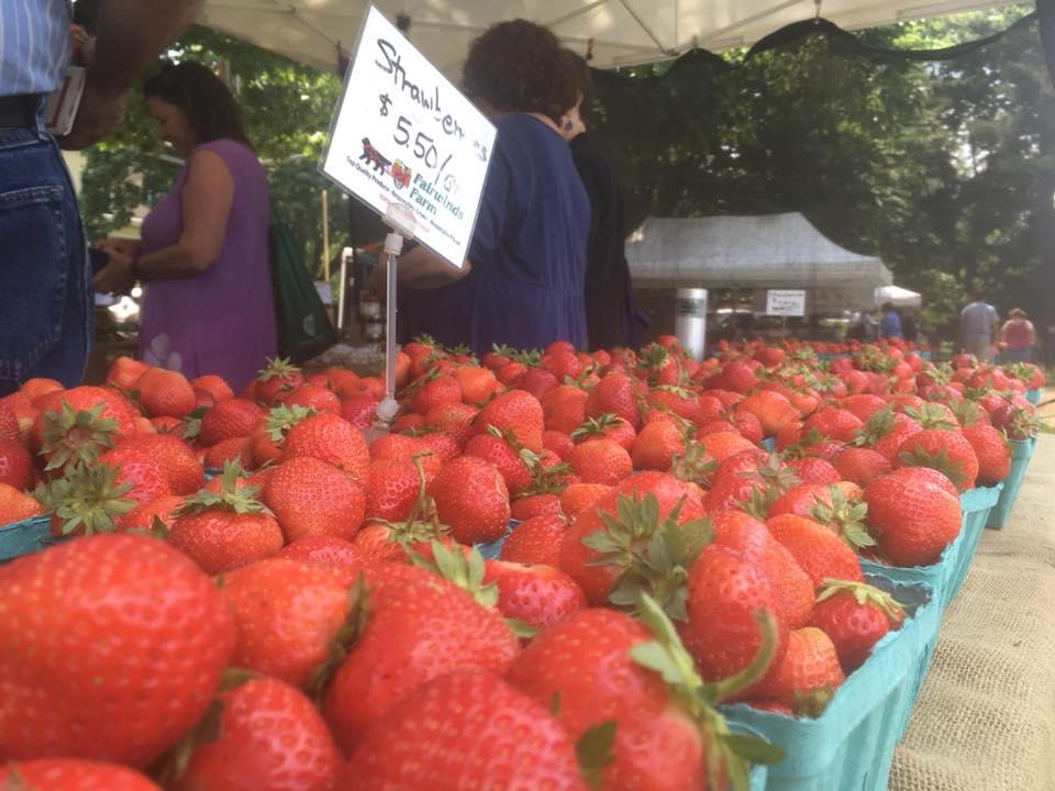 Brunswick Maine Farmers Market