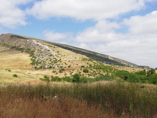 Tigranokerta