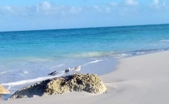 Mis días en Turks and Caicos