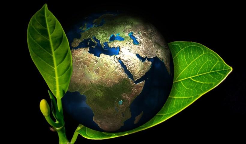 Pour la Planète
