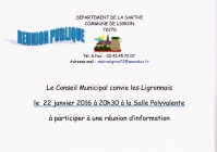 reunion publique 22_01_2016