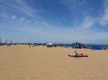 mordialloc beach December 2014 3