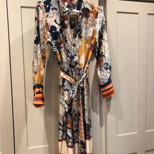 Silk Printed Multi Coloured Belted Shirt Dress