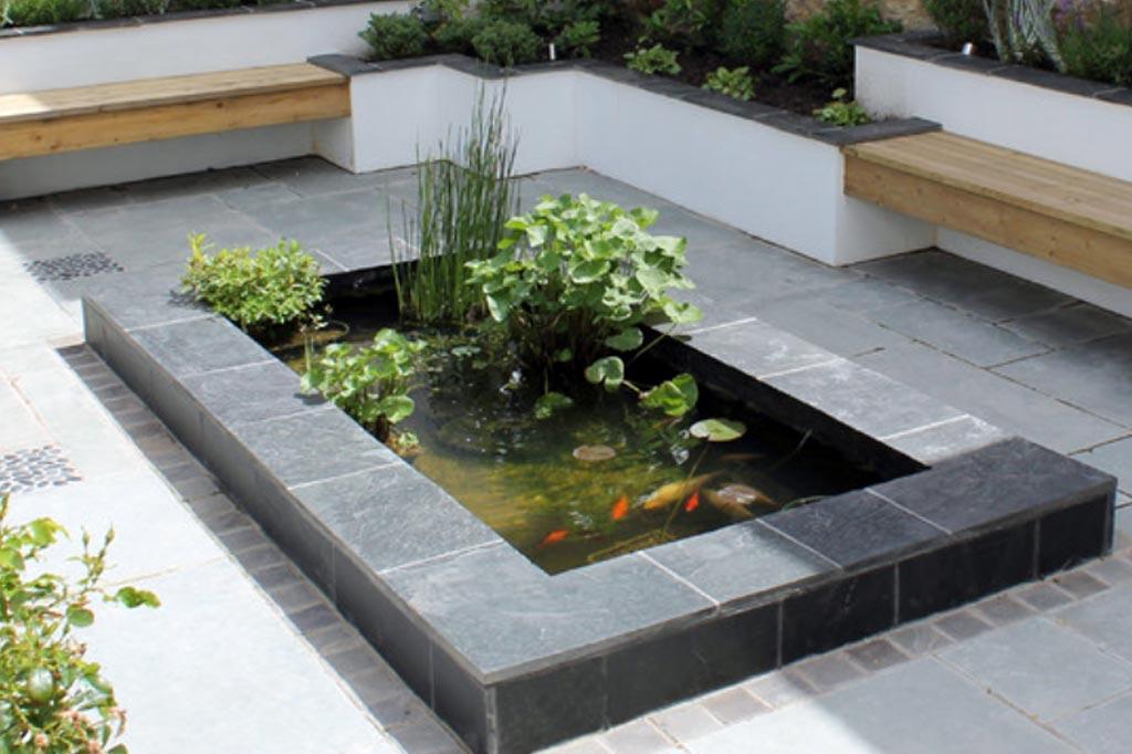 un bassin a poisson