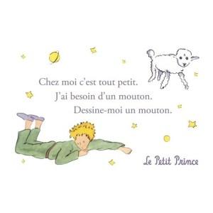 http://www.laboutiquedupetitprince.com/1810-large_default/carte-postale-le-petit-prince-dessine-moi-un-mouton-1.jpg