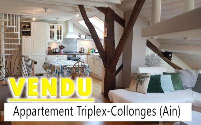 Appartement Collonges – Ain – 260'000 EUR