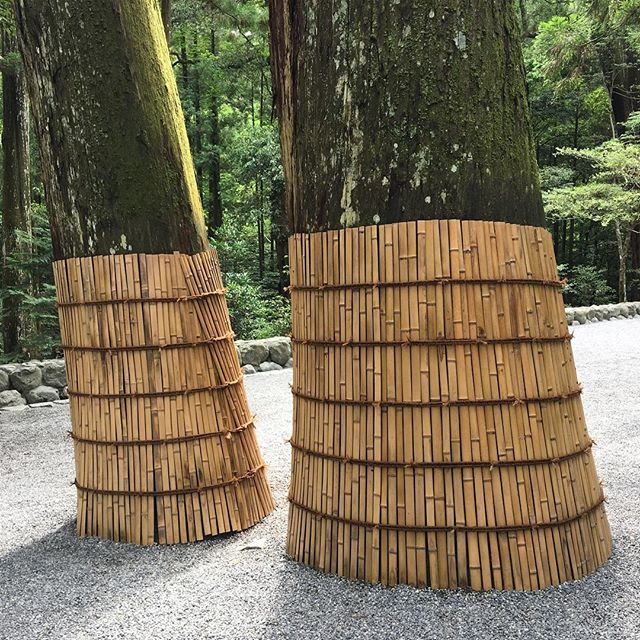 Bamboo skirts