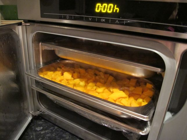 steam oven pros and cons with butternut squash risotto