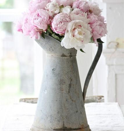 peonies-pink-kitchen