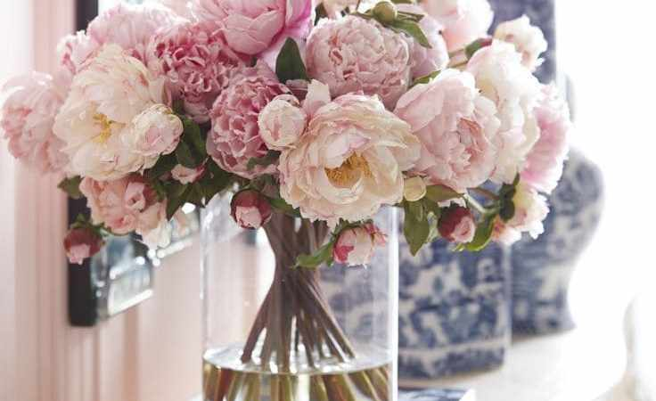 Friday Favorites – The Beauty of Peonies