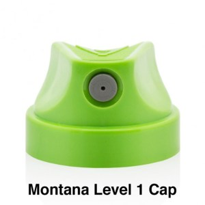 Montana Level 1 Cap