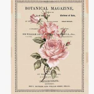 Transfer Beautiful Botanist MaisonMansion