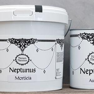 Muurverf Neptunus