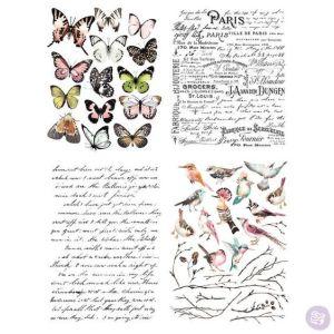 Transfer Parisian Butterflies MaisonMansion