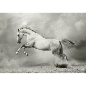 White Horse decoupage