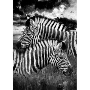 Zebras decoupage