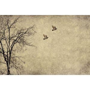 Flying Birds decoupage