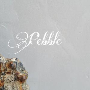 Pebble Beton Ciré bladafwerking