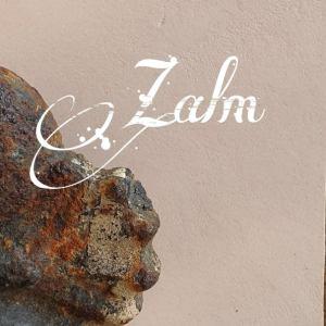 Zalm Beton Ciré