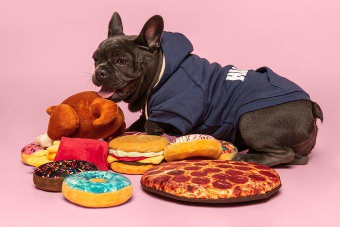 jouet pour chien fabdog