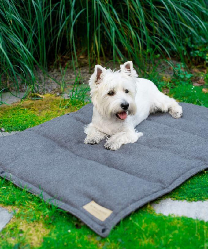 tapis chien graphite bowl and bone