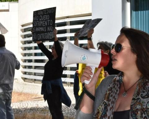 Foto: Miguel Seabra Dourado Eusébio