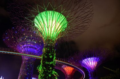 Supertree Grove no Gardens by the Bay
