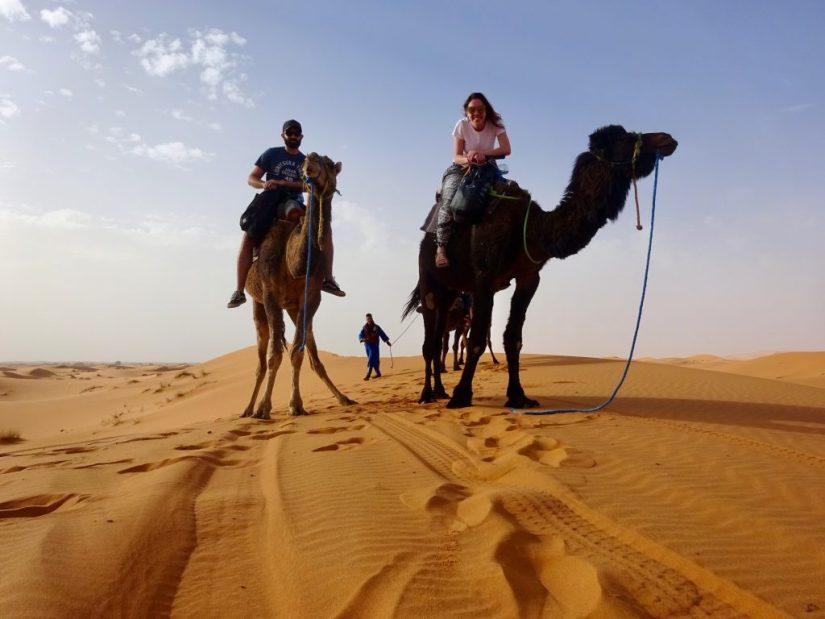 Deserto do Saara, andar de camelo, camelo, Merzouga