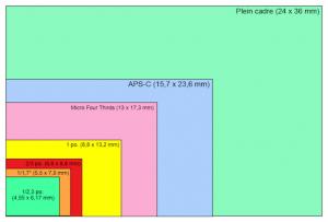 capteurs_cm - 50pc