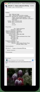 Informations du fichier sur Mac