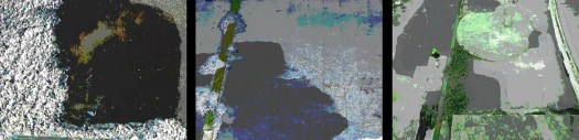 large_canvas