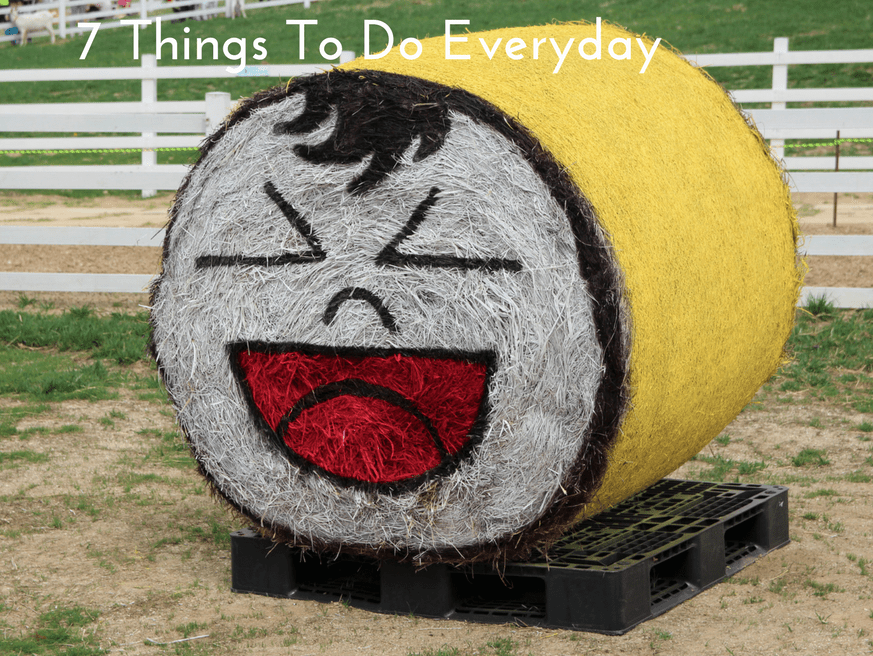 7 Things To Do Everyday