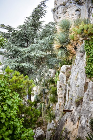 why you should visit Eze Village- Exotic garden